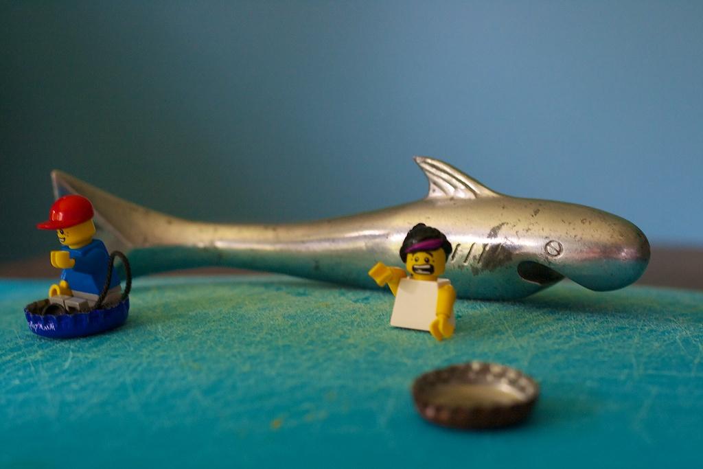 _MG_8755 shark